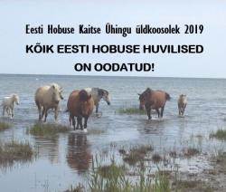 Kutse EHKÜ aastakoosolekule 2019