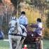 Bret Laanet ja Mariin Lepp, hobune Eetika.