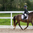 Eesti hobuste MV 2021. Hobune Rubus