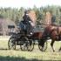Rosmarii Tisler hobusega Võru.