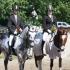 Ponide koolisõidu meistrid 2011: I - Berta Tsernant ja Mari (keskel), II - Marii-Heleen Raidmets ja Rokit (parem) ja III - Pille-Riin Reinaus ja Onslow (vasak)