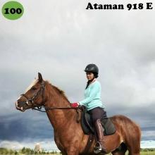 Ataman on sündinud 2014. aastal Saaremaal, i. Arthur, e. Aale, kasvataja Elle Toll, omanik Sirje Põldaru.  Ataman on hõbekõrb täkk, loomult väga tore ja inimest usaldav hobune, kes juba 1-aastasena astus inimese järel probleemideta kohe esimesel katsel treilerisse ja sõitis seal rahulikult pika teekonna. Atamanil on suurepärane iseloom ja hea õppimistahe, ta keskendub täielikult inimesega koostööle ka siis, kui märapreilid on lähedal. Tema peamiseks õpetajaks on olnud põhikooliealine tütarlaps, kellele ta ilusasti kuuletub nii platsitrennis kui üksi maastikul sõites. Loodame, et oma head omadused pärandab ta ka järglastele, esimesed varsad on juba sündinud. Ataman on edukalt läbinud noorhobuste jõudluskatsed ja saanud tunnustatud sugutäku staatuse.